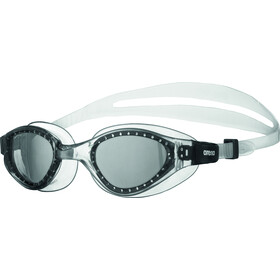 arena Cruiser Evo Lunettes de protection, smoked/clear/clear
